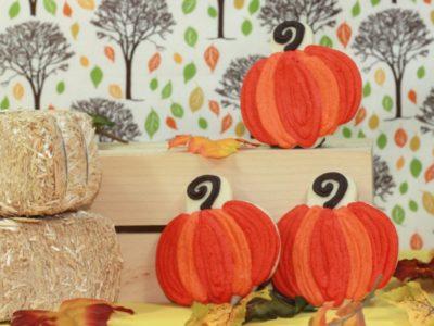 The celebration shoppe harvest collection stc pumpkin cookies