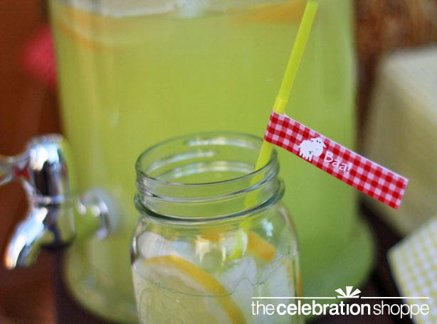 the-celebration-shoppe-farm-straw-slip-wl