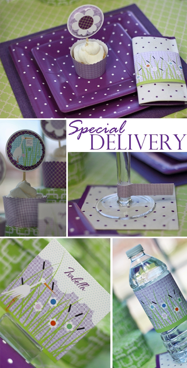 The celebration shoppe special delivery baby shower collection