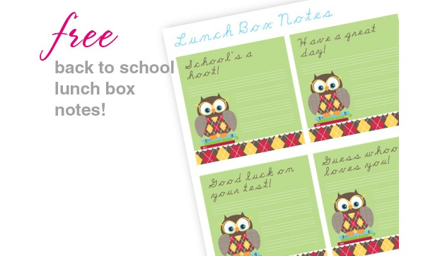 Back to school owl lunch box notes