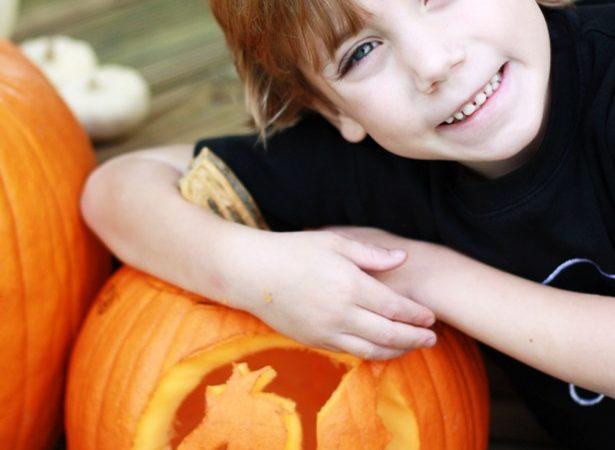 The celebration shoppe carving dragon pumpkins sm