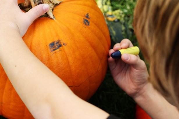 The celebration shoppe carving pumpkins 21