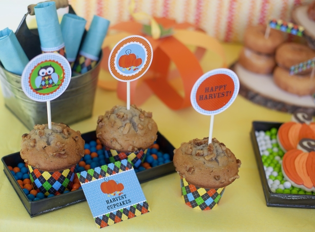 The celebration shoppe harvest cupcake trio
