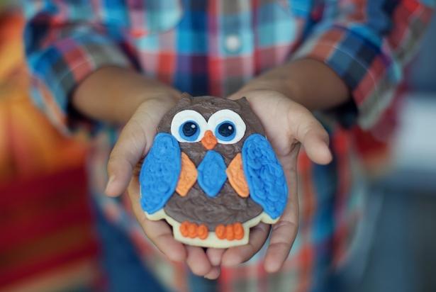 The celebration shoppe harvest hoot owl cookies