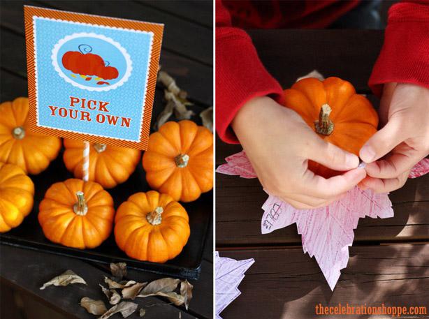 5a pumpkin turkey wl