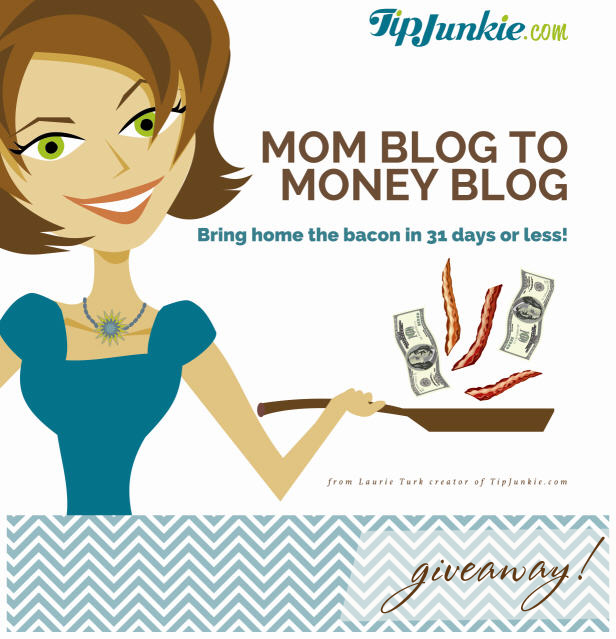 Mom blog to money blog with laurie turk cover wt