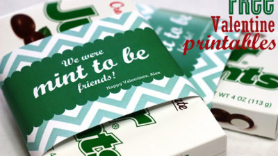 The celebration shoppe mint to be valentines 0990wt