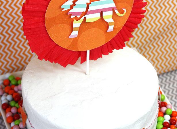 The celebration shoppe circus party cake wt