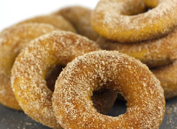 11 pumpkin doughnut 4990wl