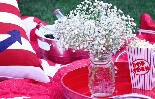 Host a picnic for the 4th of July