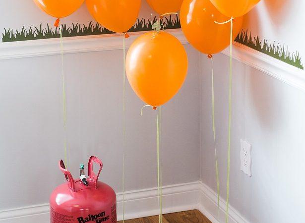 Pumpkinpatch6sm