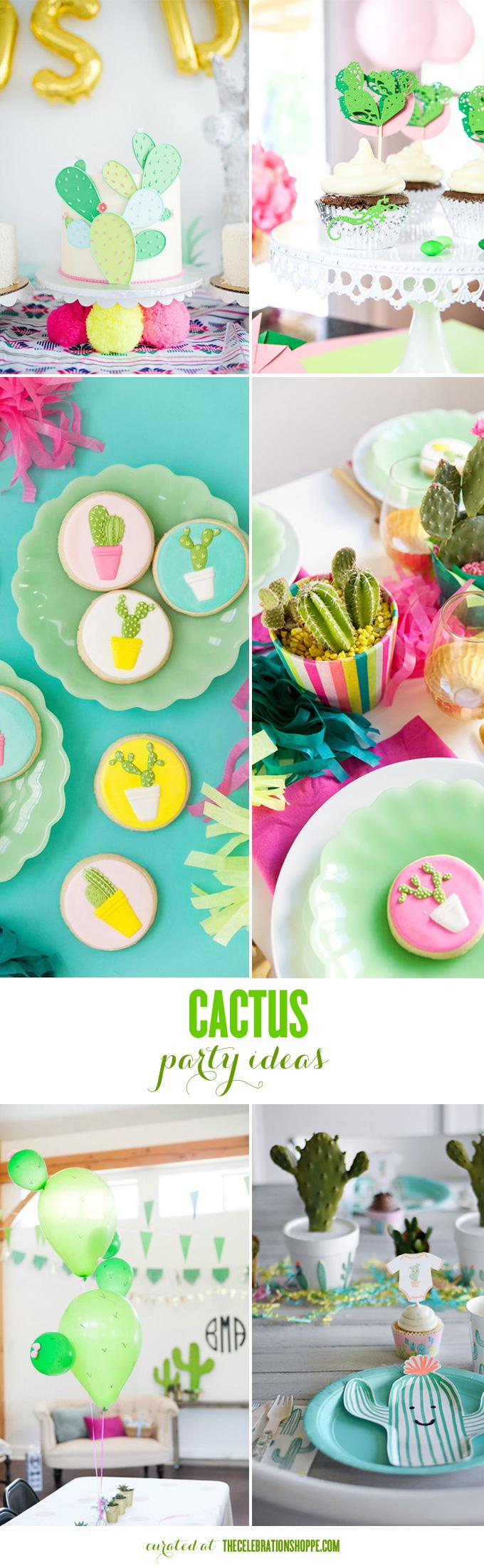 DIY Cactus Party   Kim Byers