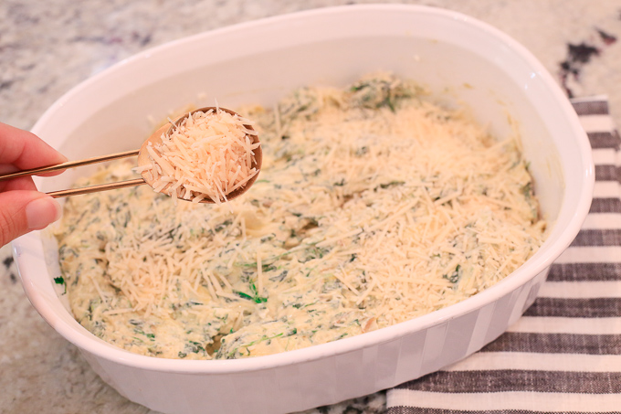 Sprinkle Baked Dip With Parmesan Cheese