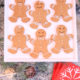 homemade gingerbread cookie recipe| kim byers